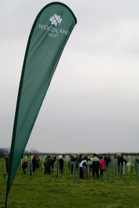 WT banner