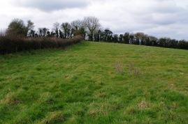 Ridge and furrow field