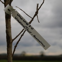 Tree label