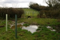 Digger in yet another wet gateway