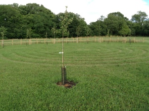 Peter and Judy have planted a circle of trees around a grass labyrinth just outside their wood, in memory of their son...