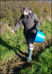 Hill sowing