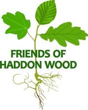 HW blog Logo