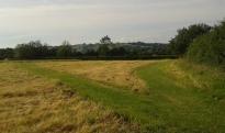 Public footpath fork in Field 2