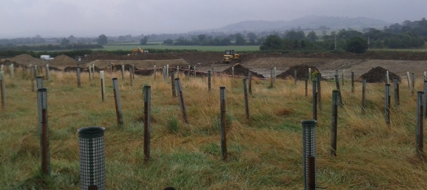 1 Aug '14 - digger and dozer working in tandem
