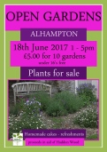 Alhampton_Open_Gardens_2017_in_aid_of_Haddon_Wood.jpg