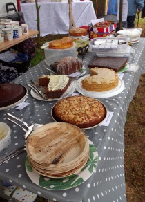 Cakes for the open day