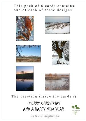 card back info 1
